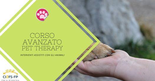 CORSO AVANZATO INTERVENTI ASSISTITI CON GLI ANIMALI (IAA) – PET THERAPY- CORSO AVANZATO
