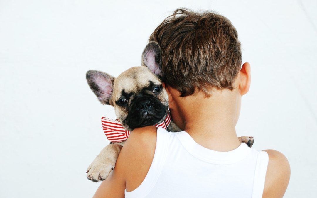 In partenza online e a Bibbiano il corso base per coadiutore del cane (I.A.A) Pet Therapy